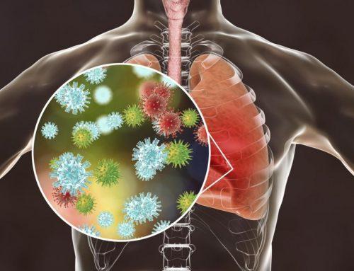 Así infecta el coronavirus el cuerpo humano