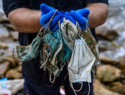 ¿Cómo evitar que los cubrebocas desechados contaminen el planeta?