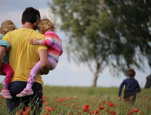 Alergias estacionales: ¿Qué son y cómo combatirlas?